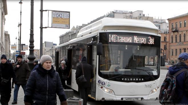 Автобусы, троллейбусы и трамвай вернулись в центр Петербурга