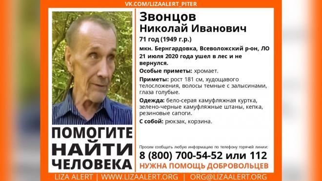 В Петербурге разыскивают пожилого грибника
