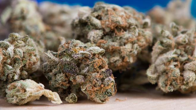 У 29-летнего петербуржца нашли около 10 граммов наркотиков
