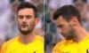 Стрекозский поцелуй: насекомое атаковало голкипера Франции во время матча