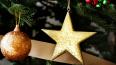 На улицах Петербургак Новому году установят 66 елей