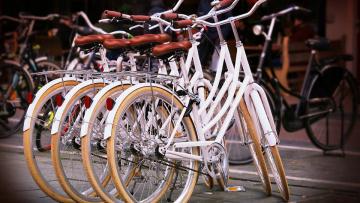 Учебные заведения Петербурга предложили оборудовать велопарковками