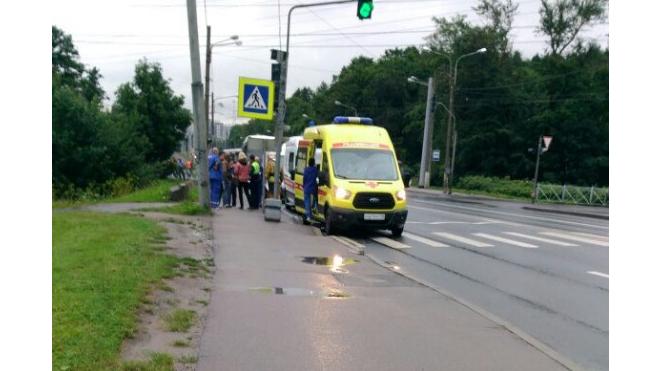 На Петергофском шоссе столкнулись рейсовый и туристический автобусы