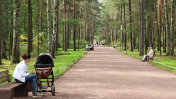 Парк Сосновка снова открыт для посещения граждан