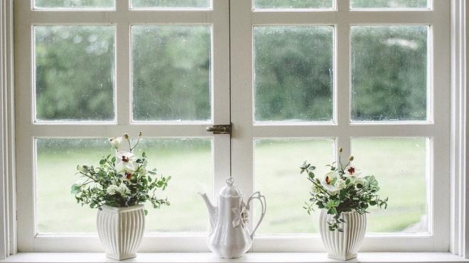 Обычное стекло заменит прозрачная древесина