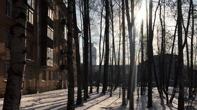 Меньше десяти часов солнце светило в Петербурге в январе