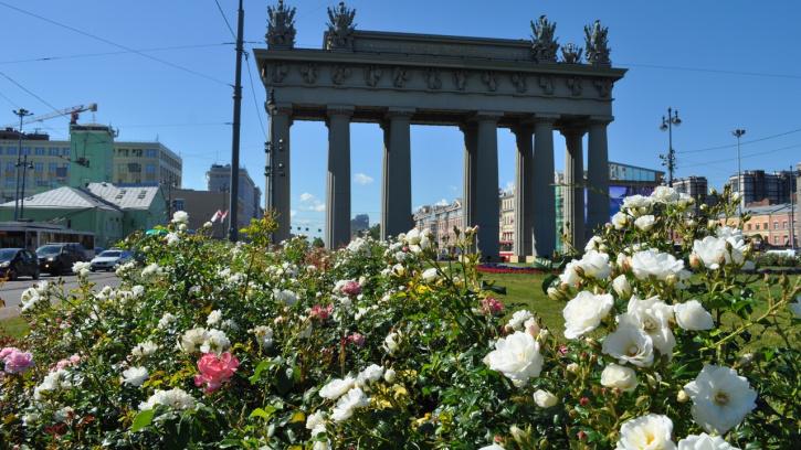 По всему Петербургу цветут розы