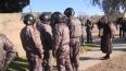 В Ленобласти 13 мигрантов сбежали из спецприемника, ...