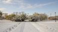 Весь день 12 января в Ленобласти будет идти мокрый снег