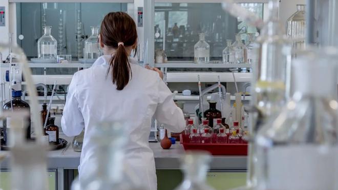 Опухоль на чипе. Учёные из Петербурга придумали новый способ борьбы с раком