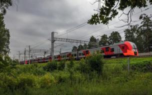 """Ласточки"" будут останавливаться на станции Орехово в Ленобласти"