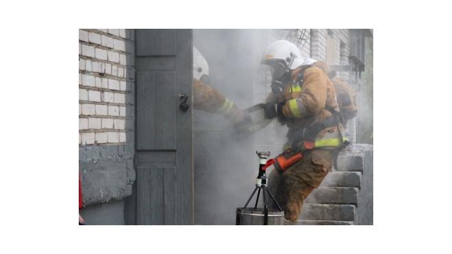 Лужские пожарные спасли от огня более тридцати человек
