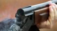 В Свердловской области пенсионер застрелил экскаваторщик...