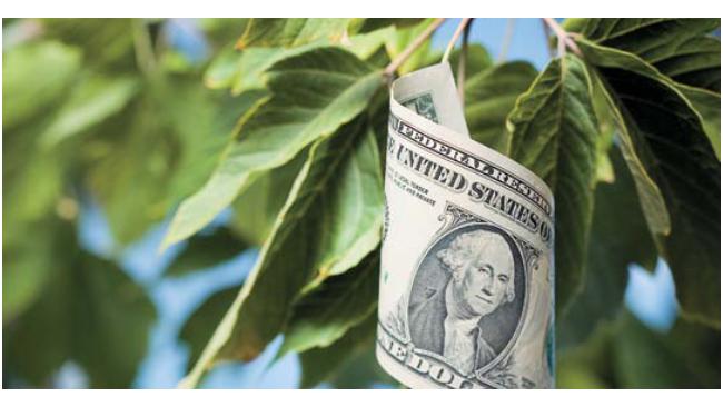 Доллар и евро резко упали