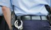 Полиция раскрыла серию карманных краж у интуристов в центре Петербурга