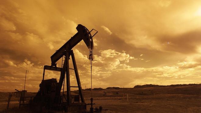 Под Киришами была найдена врезка в нефтепровод