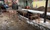 На ремонт теплосетей в Адмиралтейском районе потратят 1,5 миллиарда рублей
