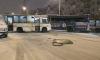 Авария маршрутки и заказного автобуса перекрыла две полосы на Ленсовета
