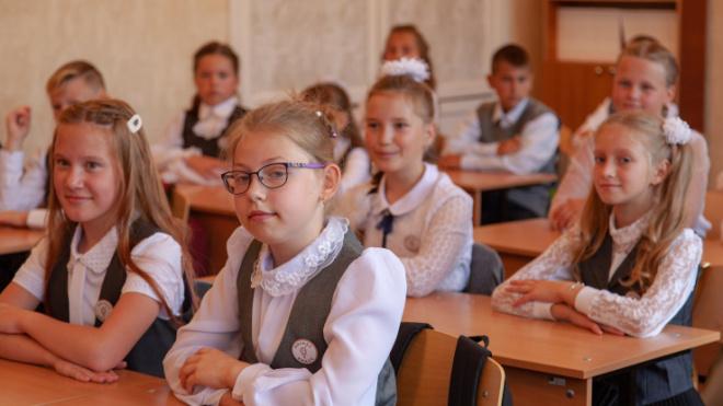 Пятиклассники в Пикалево изучат основы предпринимательства
