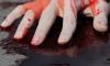 В Петербурге убийца в ожидании полиции заснул рядом с трупом