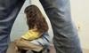Педофил напал на 8-летнюю девочку в Шушарах