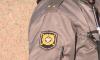 Наркоторговец на Audi сбил полицейского в Песочном и уехал вдаль