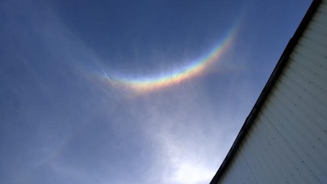 Солнечное гало заметили в небе над Выборгом и в Петербурге