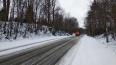 Последствия апрельского снегопада в Ленобласти разгребают ...