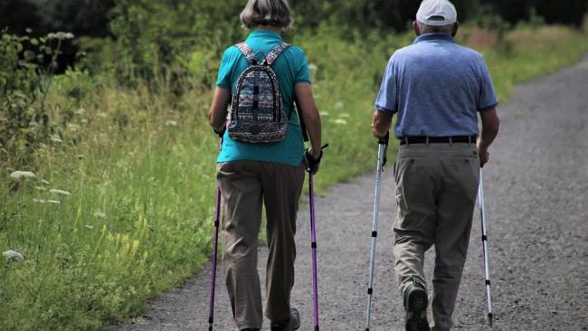 Эксперт ВШЭ назвал единственное условие снижения пенсионного возраста в России