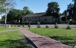В сквере Победы начались работы по озеленению