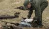 На острове в Финском заливе нашли артефакты военной поры
