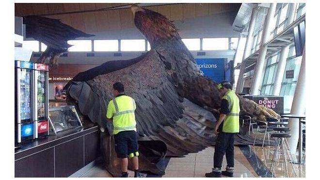"""Огромный орел из """"Хоббита"""" упал с потолка аэропорта в Новой Зеландии"""