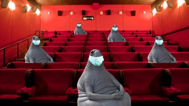 День кино в Петербурге не пройдет в кинозалах. Подробности