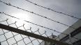 В Петербурге осудили двух мужчин за желание вступить ...