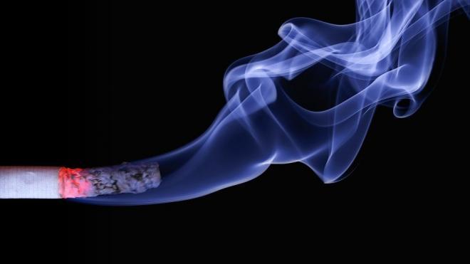 В РФ с 1 января вступят в силу новые правила для курильщиков