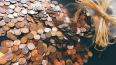 В Киришах внук избил 80-летнюю бабушку из-за денег