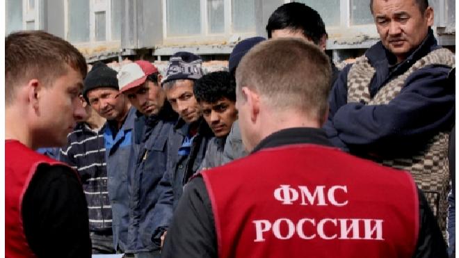 ЗакС Петербурга одобрил запрет госзаказов для компаний, нанимающих нелегалов
