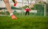 Финская футбольная сборная приедет тренироваться в Зеленогорск