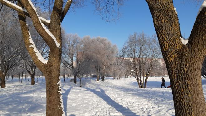 ЗакС не поддержал включение парка Малиновка в ЗНОП