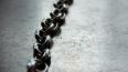 На Кубани мужчина держал 10-летнего сына на цепи