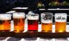 Во время ЧМ-2018 болельщики выпили более 1,6 млн литров пива