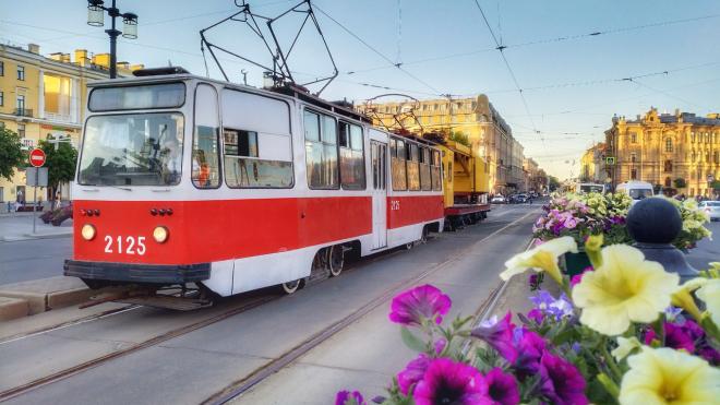 ФАС проверит законность конкурса на строительство скоростного трамвая Купчино -Славянка