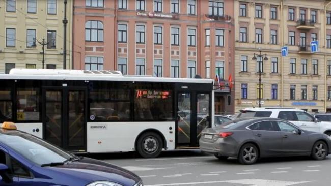 В Петербурге планируют увеличить количество автобусов на 13 маршрутов