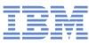 В Петербурге проходит инновационный форум IBM