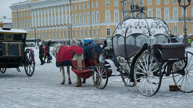 Зима возвращается: столбики термометров в Петербурге и области опустятся ниже -10