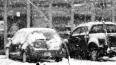 Вице-губернатор Санкт-Петербурга предложил парковаться ...