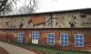 """Арт-группа """"Явь"""" рассказала о смысле наскальных живописей в Павловске"""