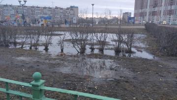 Парк Боевого Братства в Невском районе Петербурга превратился в болотное царство