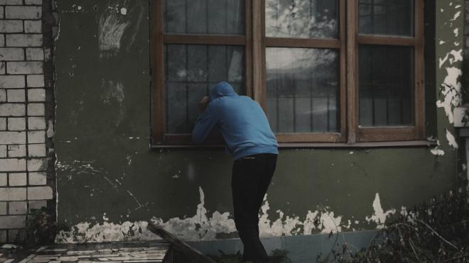 """Балконный грабитель лишил петербурженку фотоаппарата, """"ювелирки"""" и компьютера"""