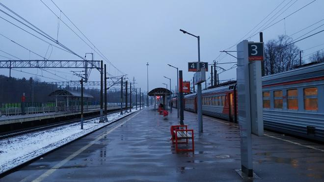 Задержкой поездов в Ленобласти заинтересовалась прокуратура
